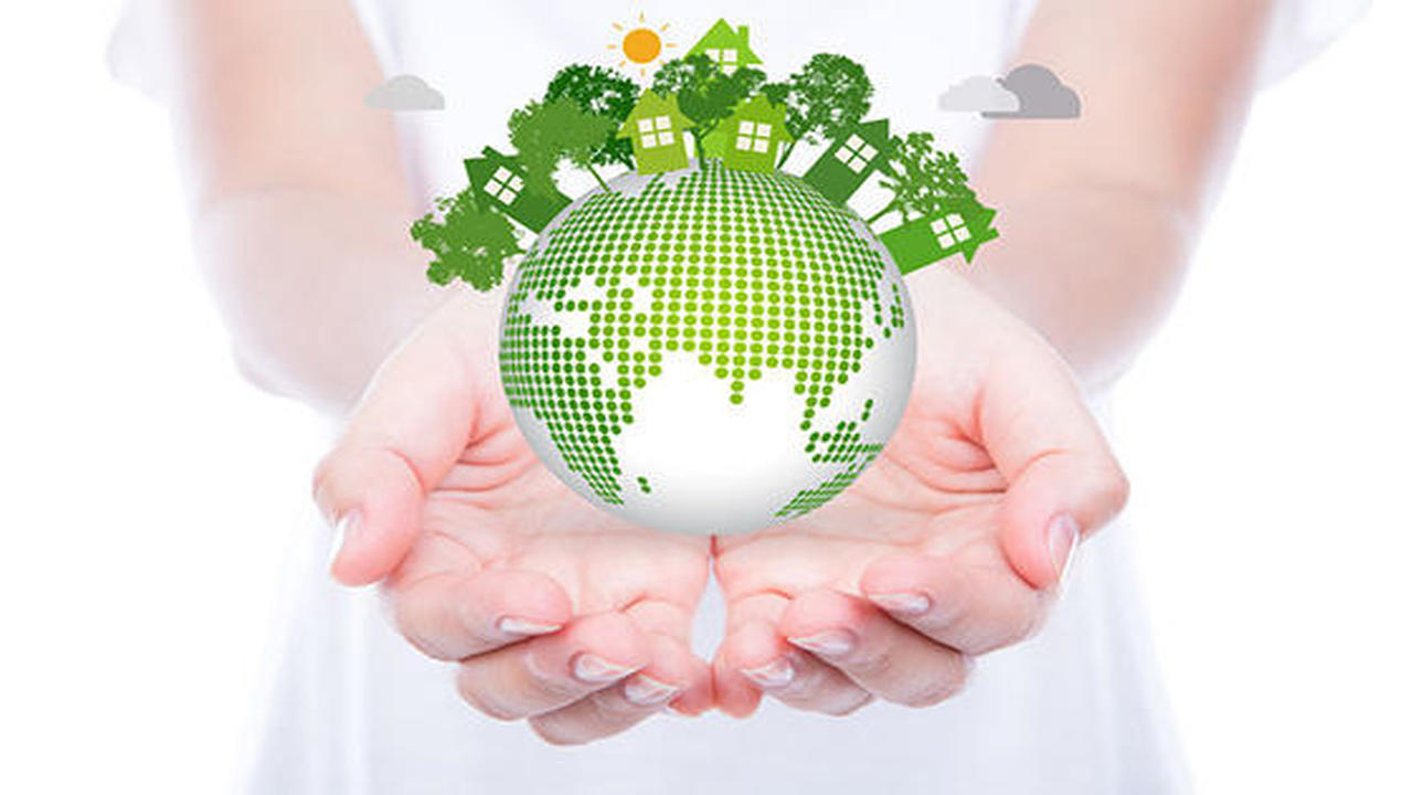Environmental and Quality Management