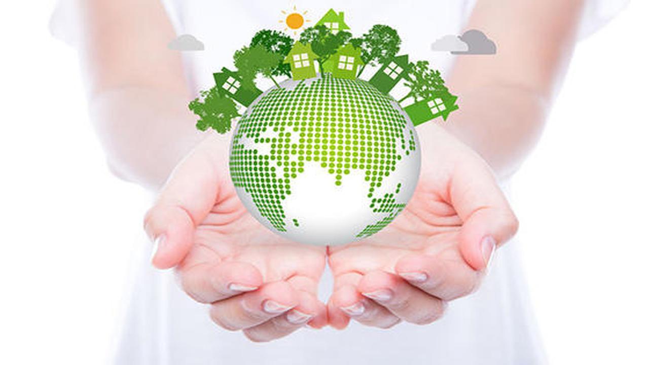 Gestión Medioambiental y de Calidad